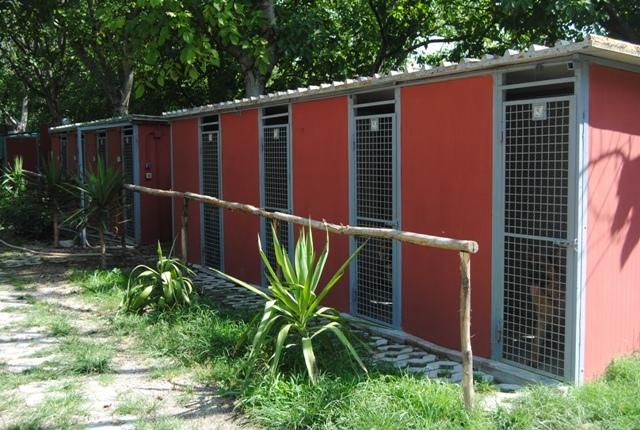Dog Kennel Service Nola